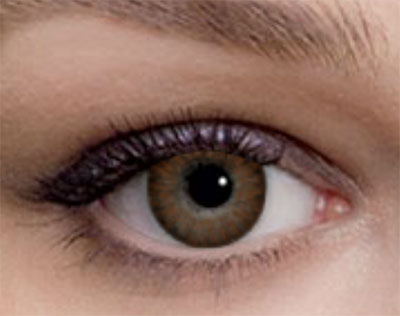Freshlook Color Blends Brown